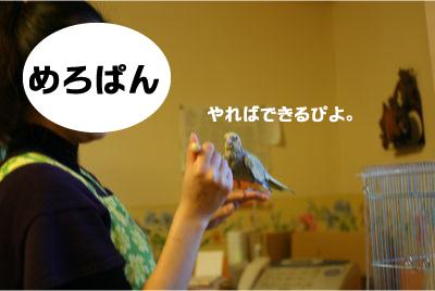 IMG_0496